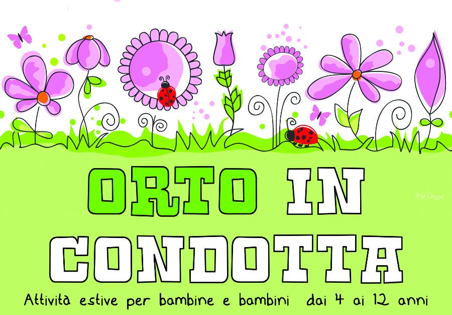 orto_web.jpg